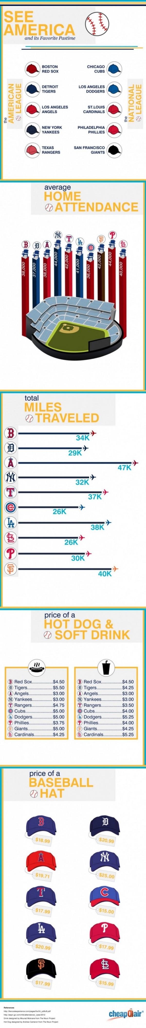Baseball Infographic