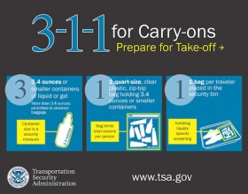 tsa 311 for carryons